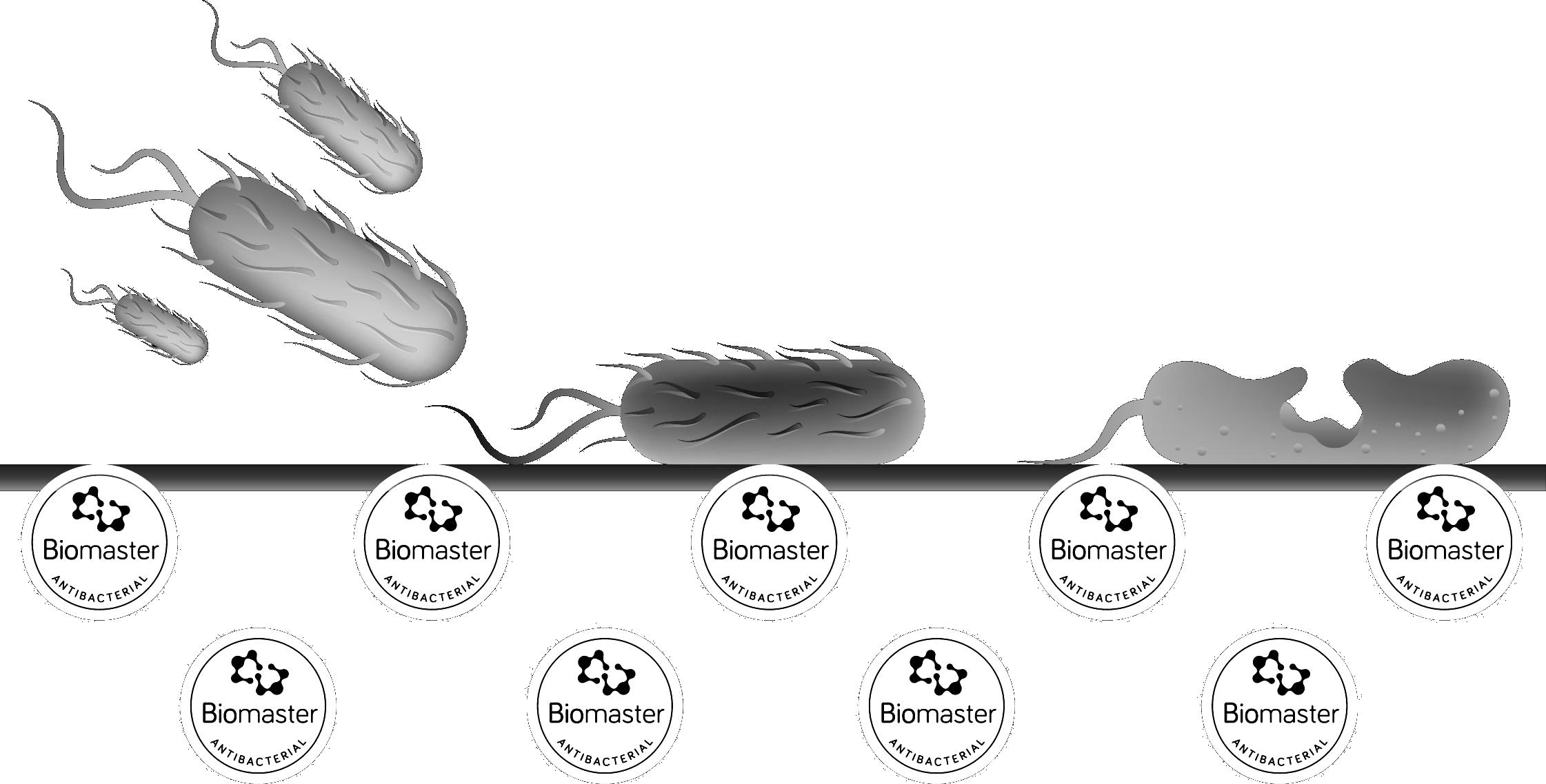 Biomaster-surface